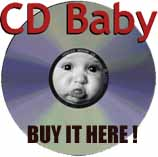Buy Stoking the Fires at CDBaby